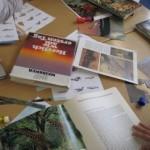 workshop-5-3