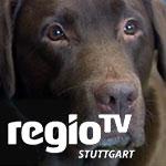 regioTV-schulhund