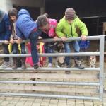 1 Ausflug Schulbauernhof