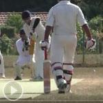 cricket_thumb